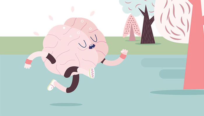 neuroplasticity and exercise